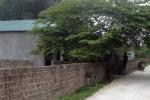 Chồng sát hại vợ rồi dùng mìn tự sát ở Quảng Ninh ngày cận Tết Nguyên đán
