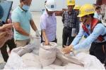 Đã có kết quả phân tích 160 tấn bùn Formosa nhập từ Trung Quốc