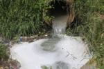 Cá chết hàng loạt trên sông Âm: Phát hiện doanh nghiệp lén chôn ống xả thải