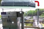 Ứng dụng thành công máy sấy cá Dứa vào thực tiễn