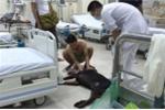 Chàng trai để bạn gái trên đường, cứu chú chó bị đâm trả thù ở Hà Nội