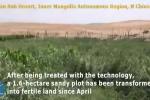 Video: Trung Quốc biến cát thành đất trồng trọt