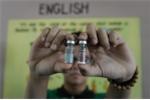 Thế giới đã có vắc xin sốt xuất huyết, tại sao Việt Nam chưa dùng?