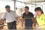 Hinh anh VTC16 – thanh cong nho huong di rieng 4