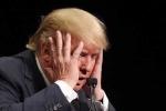 Bậc thầy tiên tri và lời dự đoán về nhiệm kỳ sóng gió của Tổng thống Donald Trump