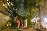 Hà Nội: Cây cổ thụ bật gốc, đè sập nhà dân trong đêm