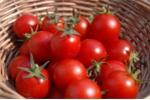 Sai lầm khi ăn cà chua khiến cơ thể thêm bệnh