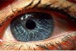1986661-eye_1024
