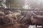 Dân xót xa nhìn hàng nghìn ô tô, xe máy no mưa no nắng, biến thành đống sắt vụn ở Hà Nội