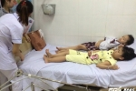 Ăn quả ngô đồng ở trường học, 9 học sinh nhập viện cấp cứu