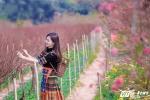 Thu Huong (3)