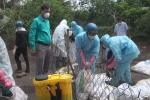 Vì sao gần 1.000 con vịt trời ở Đắk Lắk phải tiêu hủy?