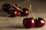 Trái anh đào: Trái cây này rất ít calo và giàu kali, chất chống ôxy hóa, có thể giúp giảm cholesterol xấu, phòng ngừa bệnh tim mạch. Quả anh đào cũng giàu vitamin A, thường xuyên ăn có thể chống rụng tóc. Bạn nên chọn loại trái đã chín đỏ, tránh mua trái đã nứt.