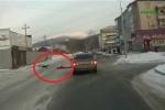 Clip chó lôi xềnh xệch chủ qua đường suýt bị ôtô đụng