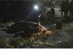 Người đàn ông chết lõa thể với vết rách ở ngực trên quốc lộ