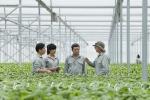 Vingroup liên kết với 1.000 HTX và hộ nông dân cung ứng nông sản sạch