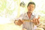 Bắt được con lươn có màu sắc kỳ lạ ở Vĩnh Long