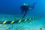 Cáp quang biển AAG sẽ được khắc phục sớm hơn dự kiến