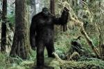 Video về hang ổ quái vật người tuyết tại Mỹ