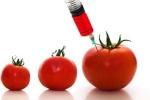 Thực phẩm biến đổi gen có ảnh hưởng tới sức khoẻ?