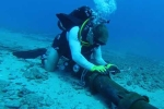 Thông tin mới nhất thời gian sửa chữa cáp quang biển AAG