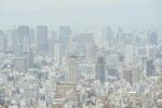 Bão cát Trung Quốc tràn đến Nhật Bản