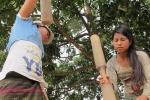 'Trộm tình' ở Trường Sơn và chiếc 'lá thần' kỳ lạ khiến phụ nữ chẳng sợ có thai