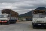 Giám đốc Sở thuê xe biển trắng mật phục xe quá tải