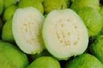 Lợi ích của trái ổi đối với sức khỏe
