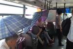 Nắng nóng gần 40 độ C, người Hà Nội che ô đi xe buýt