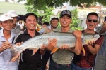 Nam thanh niên Hải Phòng vật lộn chiến đấu 'thủy quái sông Đà'