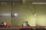 Muỗi kéo thành đàn dày đặc, tấn công người ở Bạc Liêu