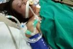 Mẹ nguy kịch vì sốt xuất huyết, con trai viết thư cầu cứu