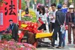 Ảnh: Rực rỡ Lễ hội hoa xuân lớn nhất miền Bắc