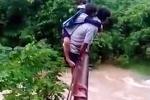 Con vắt vẻo trên lưng bố, vượt suối dữ tới trường