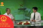 Bàn giao kênh truyền hình Quốc hội Việt Nam về Văn phòng Quốc hội