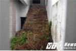 Những căn biệt thự 'ma' trong khu đô thị Văn Phú