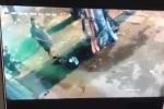 Đôi nam nữ dùng 'mỹ cẩu kế' để bắt trộm chó ở Hà Nội