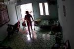 Chó cưng im re nhìn trộm lẻn vào nhà lấy cắp điện thoại