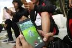 Đám đông lên cơn thần kinh như những xác sống vật vờ bắt Pokemon