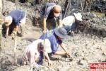Hơn 1000 ngày xới ruộng tìm kho báu của vương quốc Phù Nam