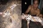 Phẫn nộ nam thanh niên sát hại mèo rừng, đăng facebook khoe khoang