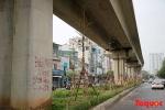 Sau hai đêm, nhiều cây xanh 'mọc' lên dưới gầm đường sắt Cát Linh - Hà Đông