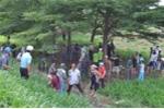 Nam thanh niên treo cổ trong rừng tràm