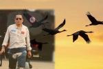 """Người lính phi công không về sẽ """"hoá sếu trắng bay cao"""""""