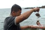 Cuộc sống kỳ lạ của quái kiệt mù trên đảo ma: Xạ thủ đuổi trộm và kỹ nghệ săn cá mập