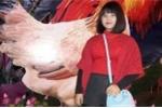 Nữ sinh Thái Nguyên mất tích bí ẩn sau tin nhắn lạ