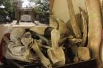 Hai bộ xương lớn nhất Việt Nam được người dân thờ như thần linh ở Quảng Bình