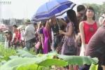 Clip: Đầm sen Hồ Tây đông nghịt thiếu nữ chụp ảnh