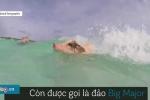 Cận cảnh hòn đảo toàn lợn bơi nhanh như kình ngư
